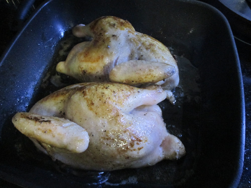 sear the chicken pieces