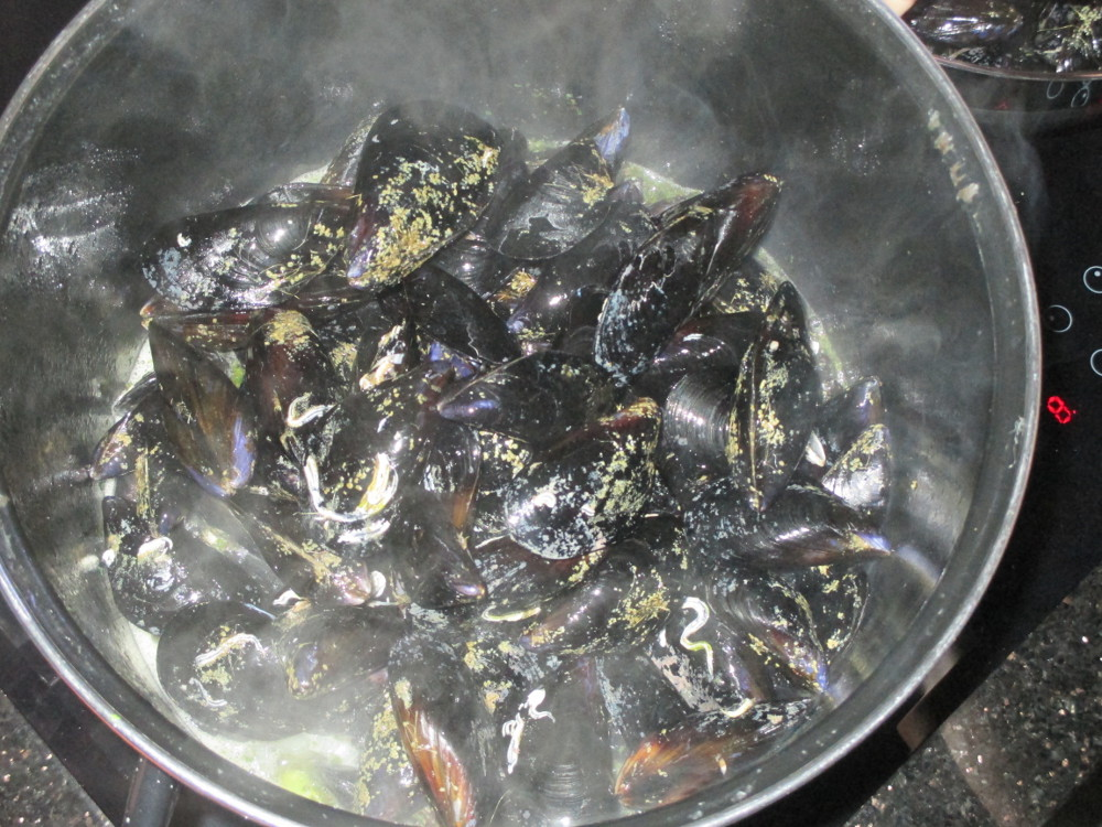 Fill up the pot with the mussels